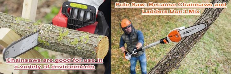Chainsaw vs Pole Saw
